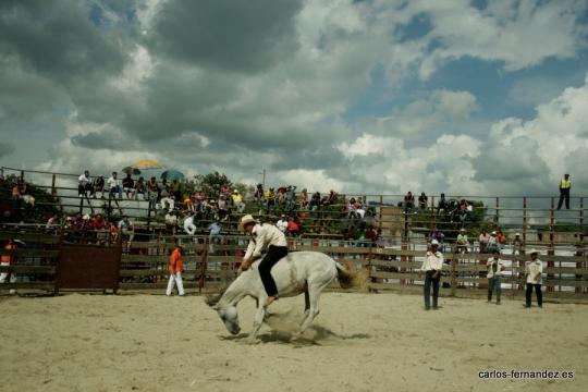 Toma 1, Rodeo en Jipijapa (6 de junio del 2012)