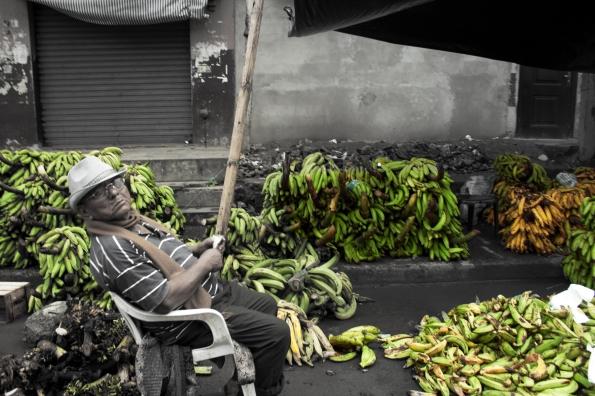 1. Plátanos